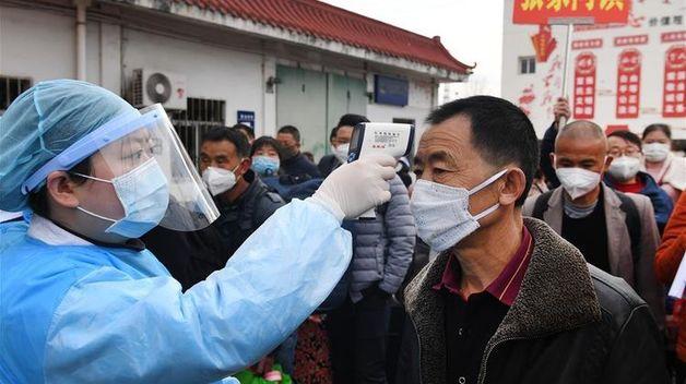 В Китае умер первый человек, инфицированный хантавирусом