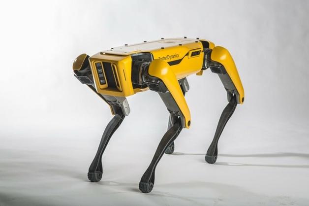 По цене автомобиля: Boston Dynamics начала продажи робопса Spot