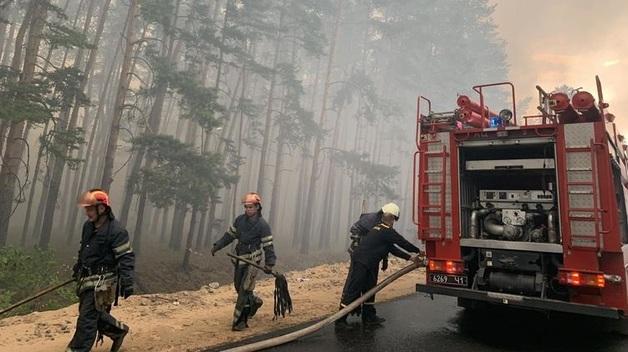 Появились фото и видео смертельных лесных пожаров в Луганской области