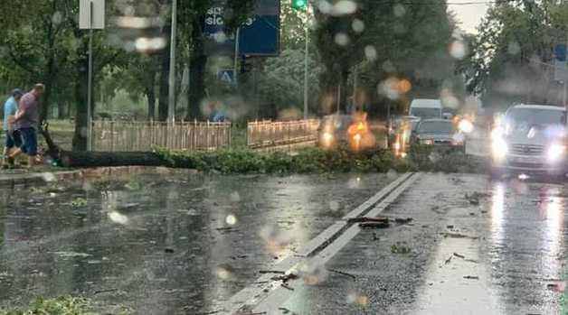 В Киеве ураган посрывал крыши и повалил деревья