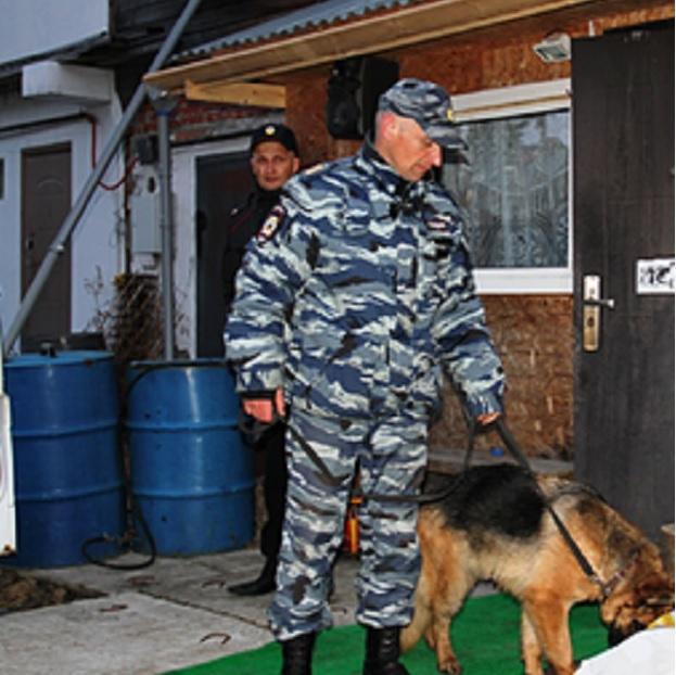 Российская служебная собака раскрыла кражу шашлыка