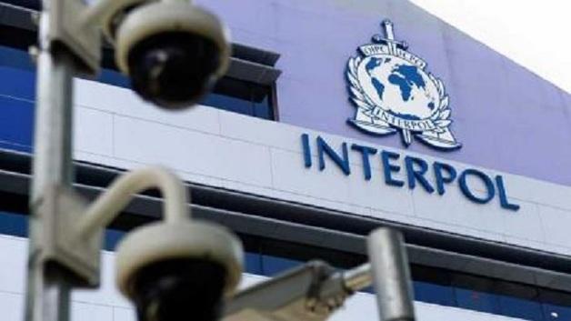 В Киеве в коррупционную схему втянули Интерпол