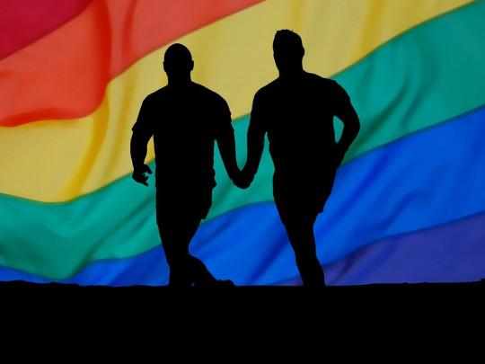 """Известное украинское издательство попало в скандал из-за """"неправильного"""" толкования гомосексуальности"""