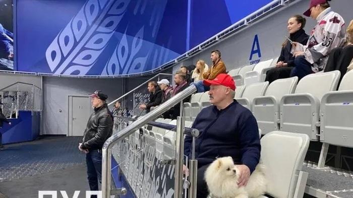 Сыновья Лукашенко выиграли чемпионат по хоккею в Минске