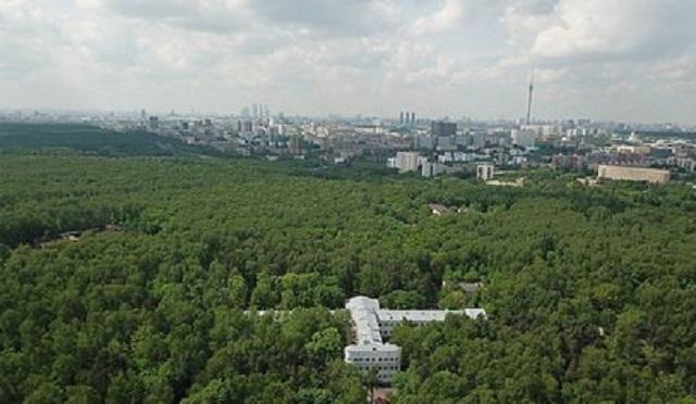 В московском парке появился новый маньяк