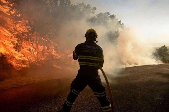 В Испании из-за окурка выгорело 400 гектаров природного парка