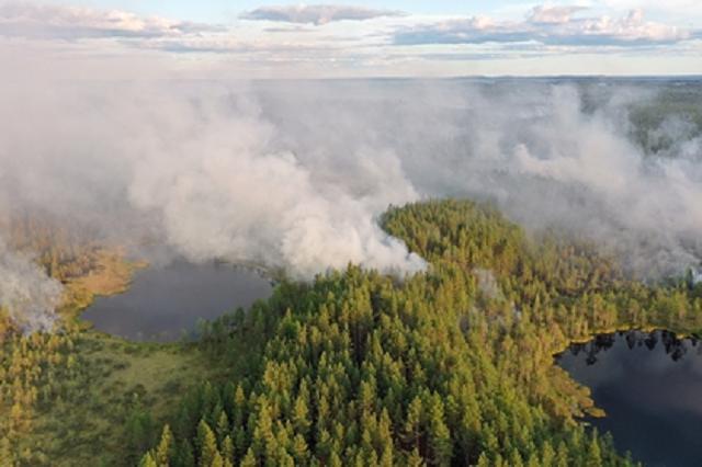 Во всей Карелии ввели режим ЧС из-за пожаров