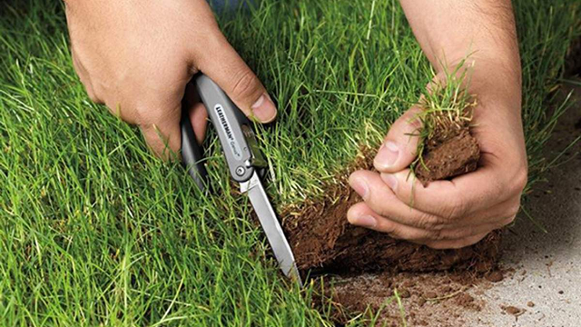 Раскрыта крупная земельная афера Госгеокадастра на Прикарпатье