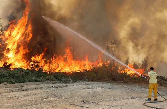 В Турции из-за лесных пожаров эвакуировали постояльцев трёх отелей
