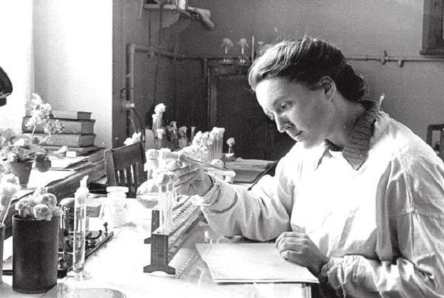 Эпидемии в СССР: история массовых заболеваний в тоталитарной стране