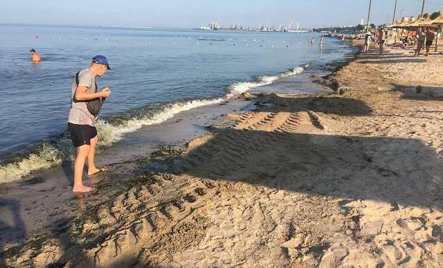 """В курортном Бердянске пляжи """"утопают"""" в водорослях, к их расчистке привлекли бульдозеры"""