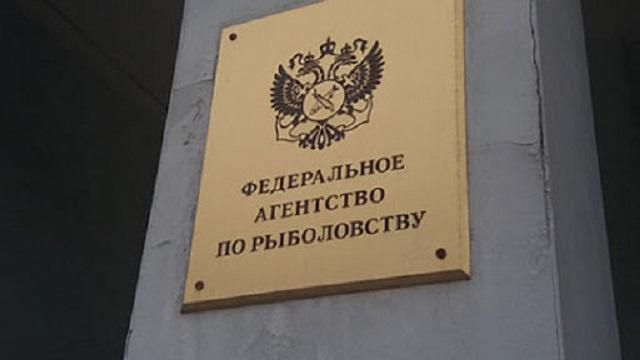 Против инспектора Росрыболовства возбудили дело — он требовал взятку в виде 100 кг икры