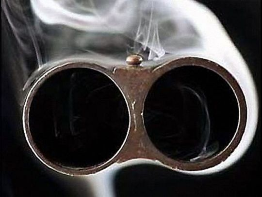 На Львовщине суд отпустил на свободу преступника, стрелявшего из ружья в полицейских