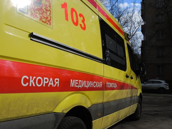 В доме на западе Москвы нашли тела двух курсантов полицейской академии и мертвого котенка