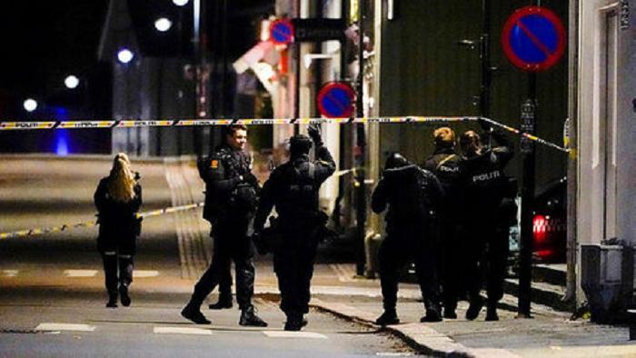 В Норвегии лучник убил несколько человек. Полиция не исключает терроризм