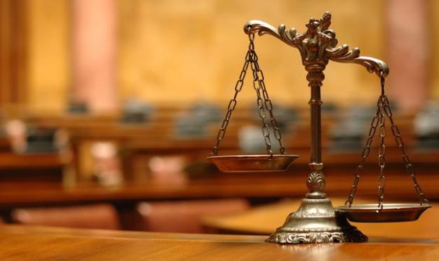Во Львове суд признал виновными и оштрафовал 60 кг слив