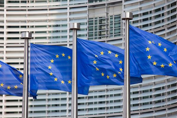 Еврокомиссия не даст Украине 600 миллионов. Европейцы хотят экспорт кругляка и проверки е-деклараций