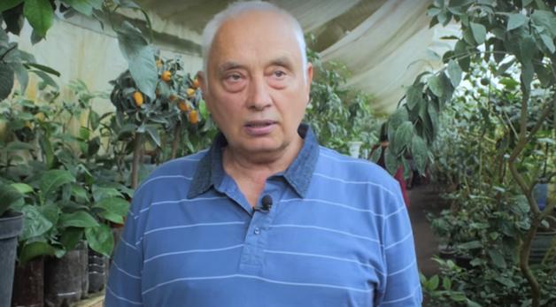 Под Киевом фермер вырастил самый большой ананас в мире