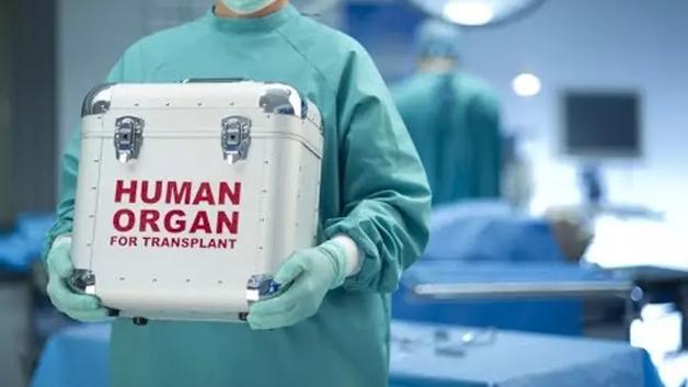 На Киевщине завершено расследование дела черных трансплантологов