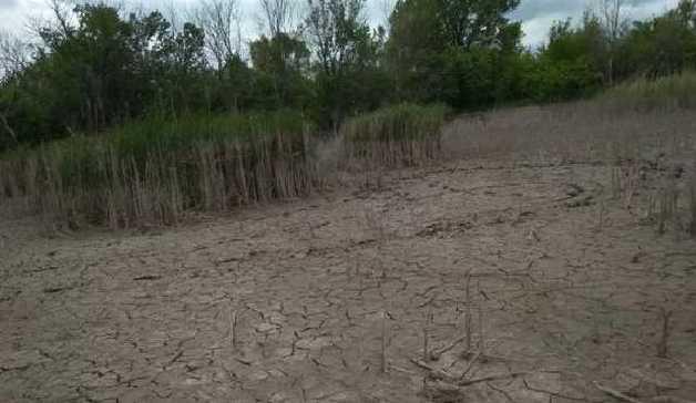 Экологическая катастрофа на Донбассе: журналист показал жуткие фото
