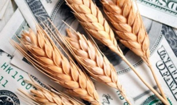 Руководитель «Хлеб-Инвестбуда» ответит перед судом за продажу иностранцам госпредприятия за 500 гривен