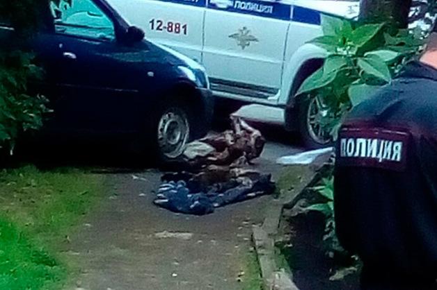 Уральская пенсионерка выволокла на помойку мумию мужа-ветерана ФСИН, которую хранила ради его пенсии