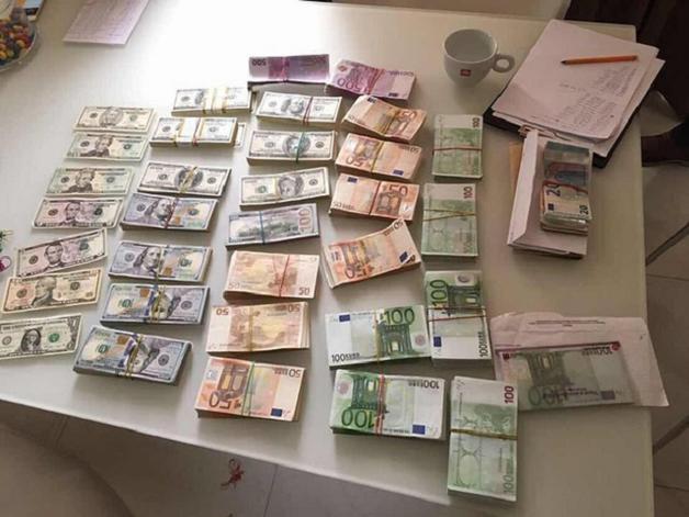 «Свиньи явно лучше людей»: под Киевом прокуратура провела обыски у высокопоставленных налоговиков
