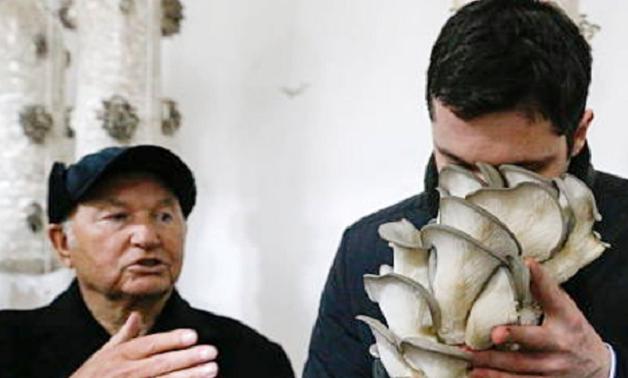 Семь лет брокера Иванова
