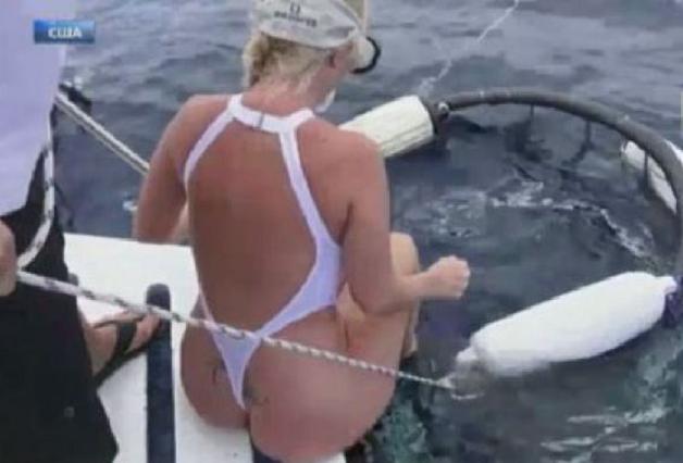Акула атаковала порноактрису во время подводной фотосессии