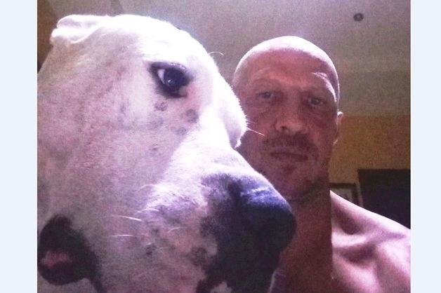 В Таиланде скончался россиянин со своей собакой при невыясненных обстоятельствах