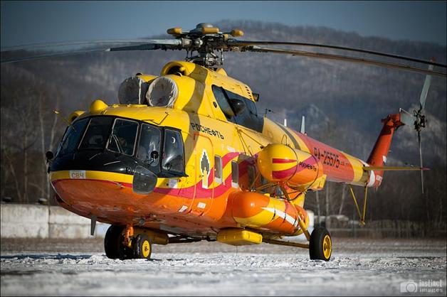 «Роснефть» отказалась от закупки роскошной посуды для вертолета компании