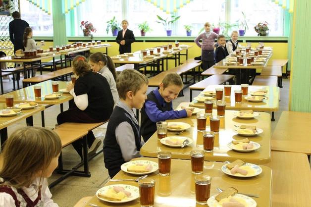 Депутаты Госдумы хотят исключить импортные продукты из школьного питания
