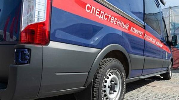 Педофил совратил 36 российских школьниц за три года